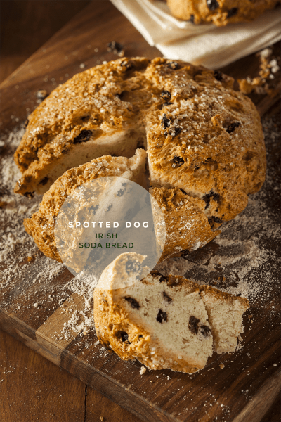 Spotted Dog Irish Soda Bread